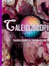 Revista Digital de Trabajo Social Caleidoscopio #3