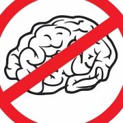 No Brain No Futute