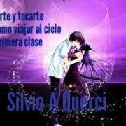 Silvio Andres Querci