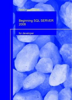 Beginning SQL SERVER 2008