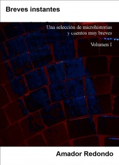 Breves instantes: Una selección de microhistorias y cuentos muy breves - Volumen 1