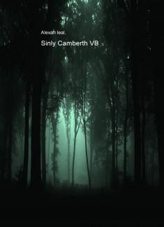 Sinly Camberth VB