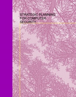 STRATEGIC PLANNING FOR COMPUTER SECURITY