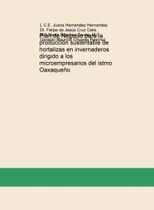 Plan de Negocio para la producción sustentable de hortalizas en invernaderos dirigido a los microempresarios del istmo Oaxaqueño