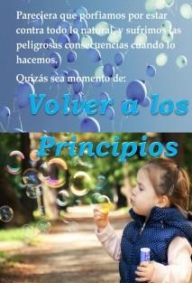 VOLVER A LOS PRINCIPIOS