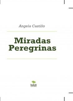 Miradas Peregrinas