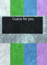 Libro Cuzco for you, autor intim6