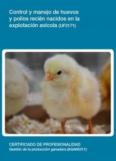 UF2171 - Control y manejo de huevos y pollos recién nacidos en la explotación avícola