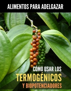 Alimentos Para Adelgazar. Cómo Usar Termogénicos y Biopotenciadores